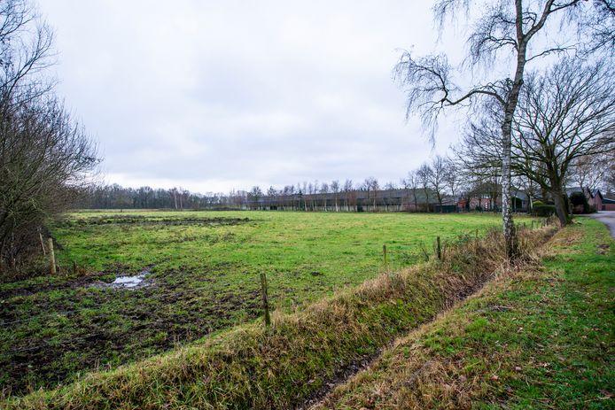 Geldrops Gijzenrooi zoals het nu is: grasland en kippenstallen op de achtergrond.