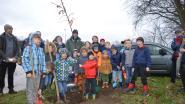 30 nieuwe bomen bij dankzij jeugdspelers KWS Linkhout