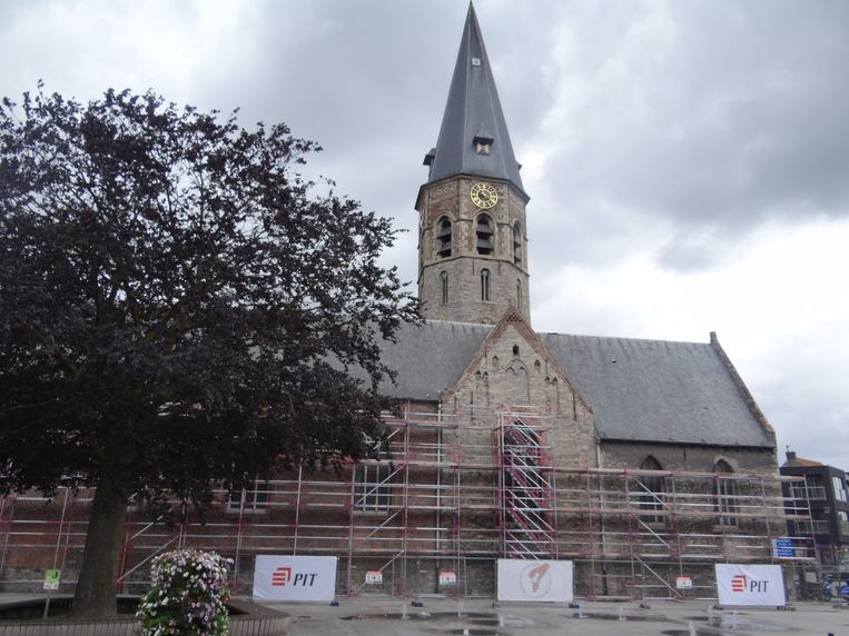 De Sint-Petrus en Sint-Martinuskerk staat al in steigers. Tijdens de opbouw van de stellingen zijn vijf nesten van gierzwaluwen ontdekt. Tot 1 augustus liggen de werken daardoor stil.