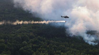 Al honderd hectare bos in brand in noordoosten Duitsland, ook bossen en akkers in Frankrijk getroffen