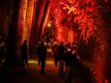 """""""Ne venez pas à Bruges ce soir"""": la police dissuade les visiteurs de se rendre au festival des lumières"""