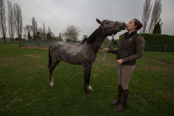 Na lang revalideren mag een verwond paard weer de wei in. Eigenaar Veerle is dolgelukkig.