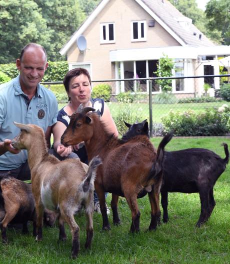 TuinAwards: Jan en Carien van Wezel laten ook voorbijgangers van hun tuin genieten