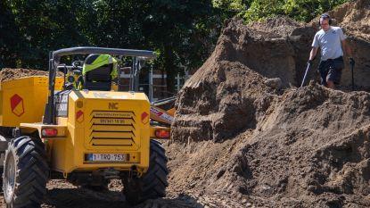 Ferme ontdekking op Sint-Alexiusbegijnhof: Kris vindt nooit eerder beschreven munt van Karel De Stoute