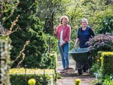 Zand of veen, Haagse tuinier maakt er wat van
