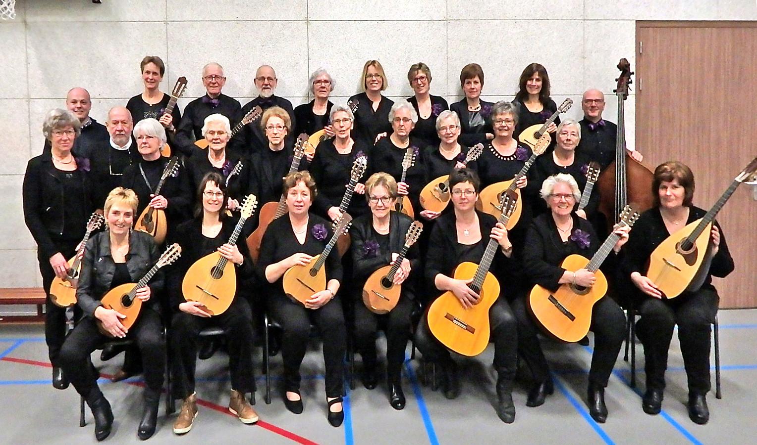 Mandolineorkest Melodia