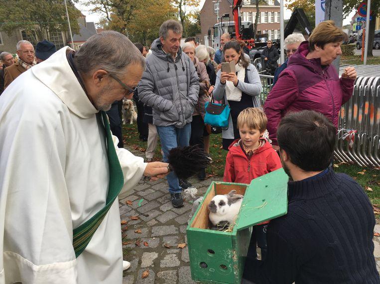 Dierenwijding in Oostakker: een jongen bracht zijn konijntjes mee.