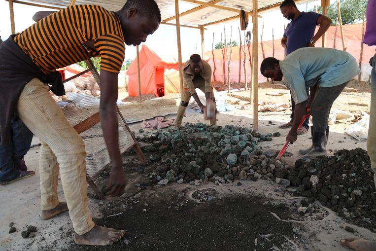 Ambachtelijke mijnwerkers sorteren mineralen in Congo. Beeld AFP