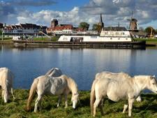 Omwonenden Wijk bij Duurstede willen oude boot weghebben uit Nederrijn