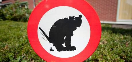 Gemeente Hellendoorn vraagt hulp bij maken nieuwe hondenpoepbeleid