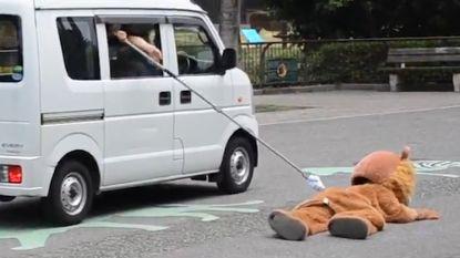 Ontsnappingsoefening van Japanse zoo zorgt voor hilariteit