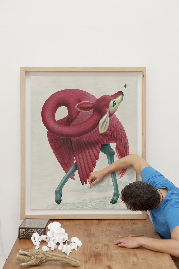 Illustrator Raoul Deleo. Beeld Marie Wanders