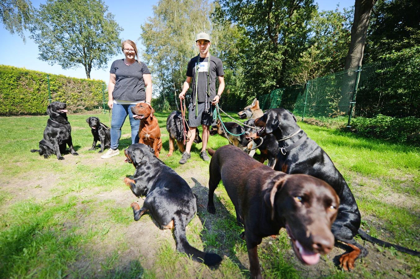 Marloes tenHagen en Jacco Meuleman temidden van de honden die zij momenteel opvangen en trainen.