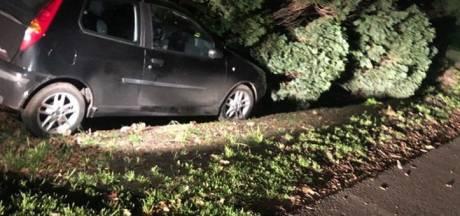 'Dollemansrit' 17-jarige beschonken automobiliste zonder rijbewijs eindigt in de berm