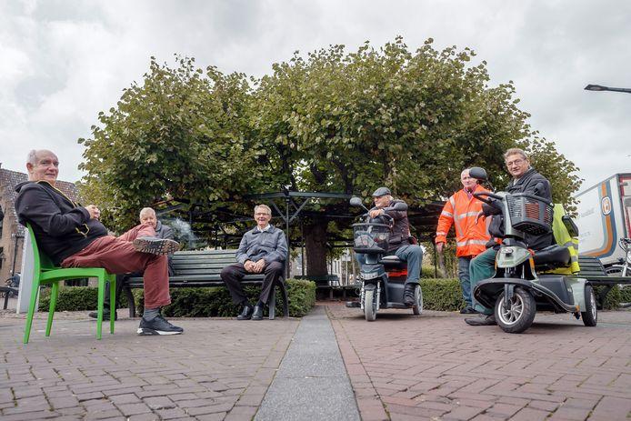 Etten-Leur - 9-10-2020 - Foto: Pix4Profs/Marcel Otterspeer - De Moeierboom wordt wellicht Boom van het Jaar. En het is de vaste stek van deze boomhangers Ed, John, Jos, Kees, Janus en Adrie