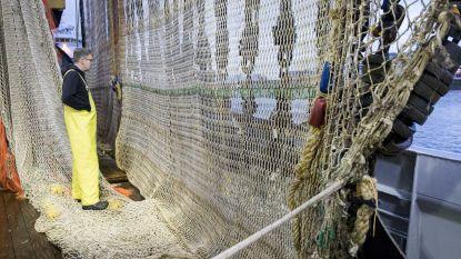 """OPINIE: """"Als we zo voortdoen, zal er tegen 2050 meer plastic dan vis te vinden zijn in de zee"""""""