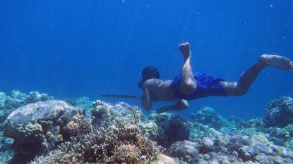 Knap staaltje evolutie: hoe deze onderwatervissers langzaam maar zeker transformeren in 'aquamensen'
