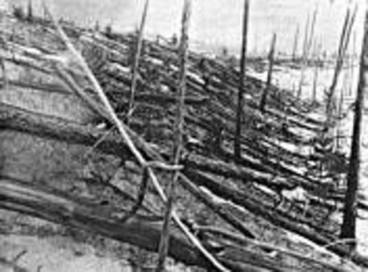 Geknakte bomen nabij de Toengoeskarivier, gefotografeerd in 1927. FOTO GPD/Leonid Kulik