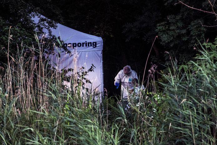 Het bosje aan de Nieuwe Ubbergseweg waar de Pool werd gevonden.