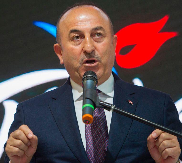 De Turkse buitenlandminister Mevlüt Cavusoglu kondigde vandaag in Berlijn aan dat Turkije een dertigtal meetings in Duitsland wil organiseren ter ondersteuning van de grondwetswijziging die president Recep Tayyip Erdogan meer macht moet geven.