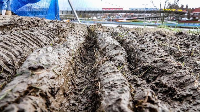 """Het gras moet tegen volgende lente weer in orde zijn. """"De natuur zal zichzelf herstellen"""", zegt Geert Hoste"""