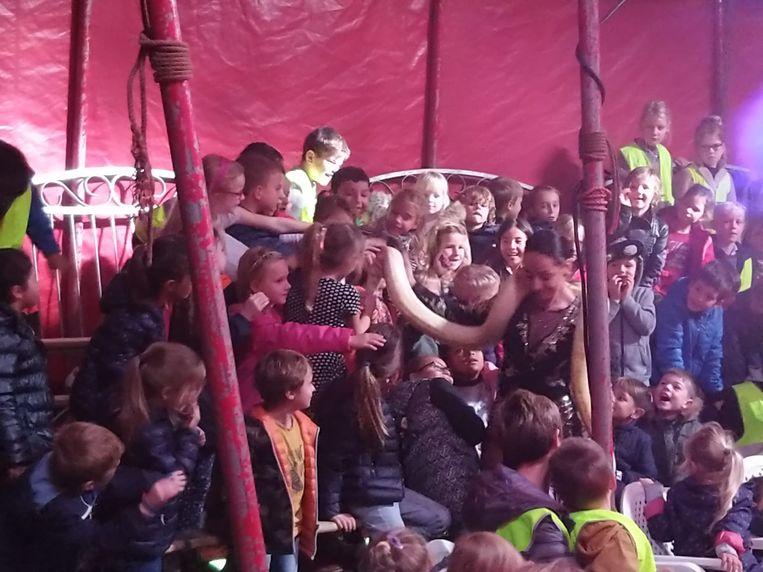 Lagere scholen De Mozaïek en De Cirkel bezoeken circus Pepino - leerlingen zijn in de ban van een slang