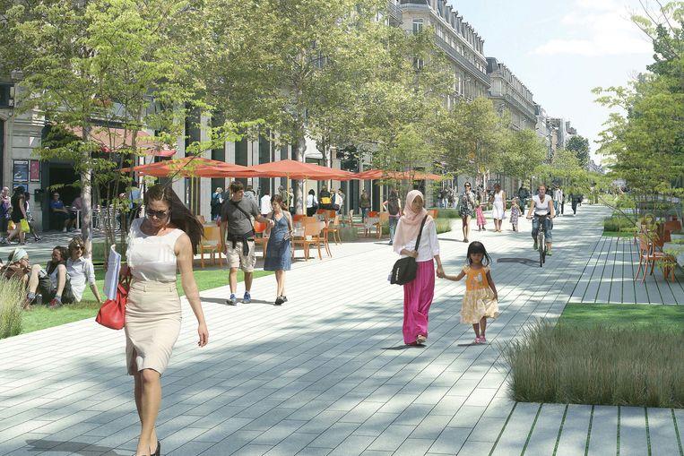 Brussel moet volgens de plannen ook groener worden.