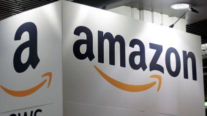 Amerikaanse waakhond richt pijlen op Amazon