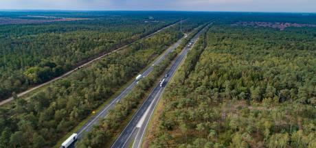 Omstreden bomenkap langs A28 tussen Wezep en Harderwijk verplaatst naar volgend jaar