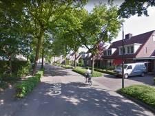 Forse bomenkap aan Gildelaan roept vragen op bij HOI Werkt, 'Kaalslag past niet bij ambities Hilvarenbeek'