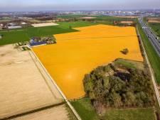 'Boeren moeten verstandig omgaan met een middel als glyfosaat'