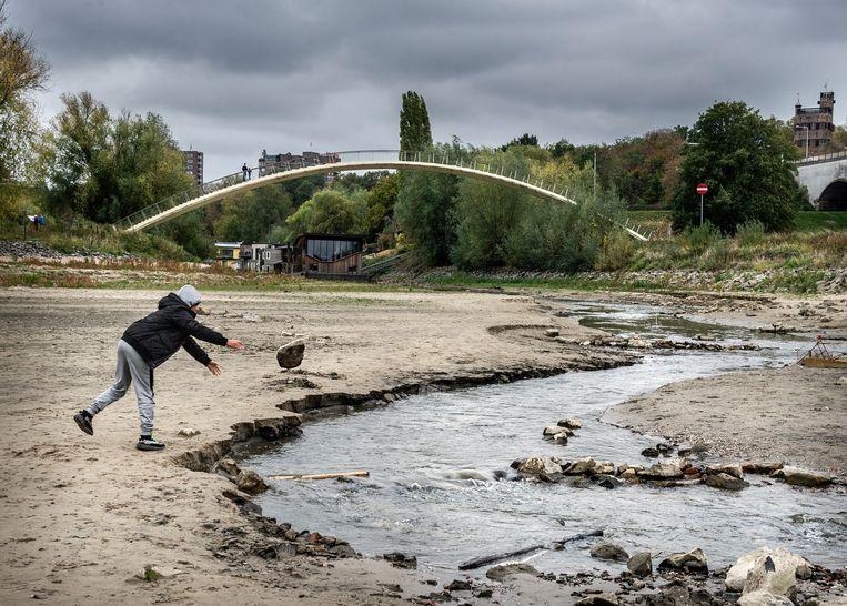Na de droge en warme zomer stond het water in de Waal bij Nijmegen najaar 2018 bijzonder laag. Beeld Koen Verheijden