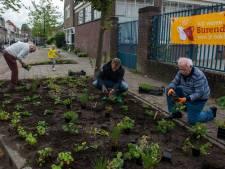 Aantal Burendagactiviteiten in Overijssel richting 600