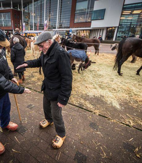 Goor stelt Paardenmarkt uit