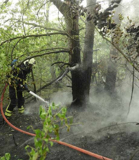 Bermbrand langs A28 bij 't Harde snel geblust