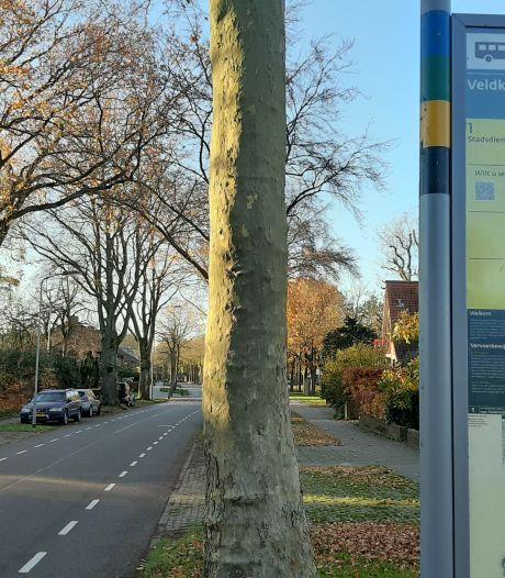 PvdA slaakt hartenkreet: 'Stoppen met verschraling van stadsbus Harderwijk'