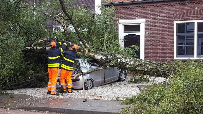 Een boom viel op een auto in de Kapelstraat-Noord
