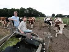 Foodtruck uit Eibergen met 'een eerlijk verhaal' valt in de smaak