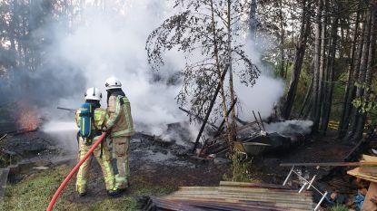 Chalet aan visvijver in de as gelegd: alles wijst op brandstichting