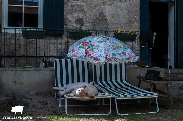 Frans op vakantie. Foto Kim Pattiruhu
