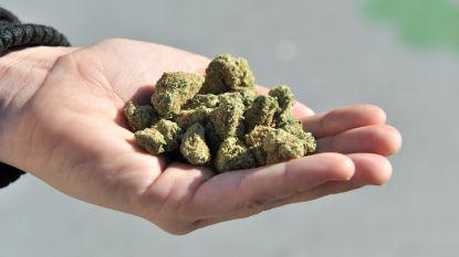 Brandweer moet 'cannabisspoor' opkuisen op rijbaan in Sint-Niklaas