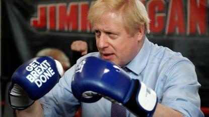 Boris bokst voor de brexit