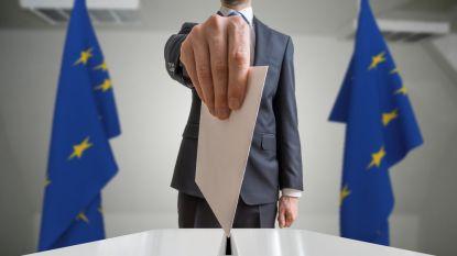 Hoe verlopen de Europese verkiezingen? En wat zijn  'Spitzenkandidaten'? Een overzicht