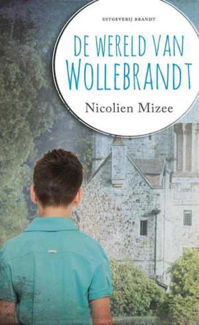 Nicolien Mizee- De wereld van Wollebrandt Beeld