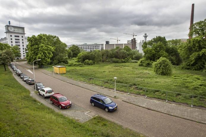 Het Gloeilampplantsoen gezien vanaf het spoor bij NS-station Strijp-S. Op de voorgrond de Achtseweg-Zuid, links het Klokgebouw op Strijp-S. FOTO Tom Valstar/Fotomeulenhof