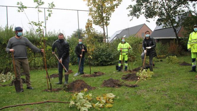 Emelgemnaar schenkt vijftien bomen aan stadsbestuur