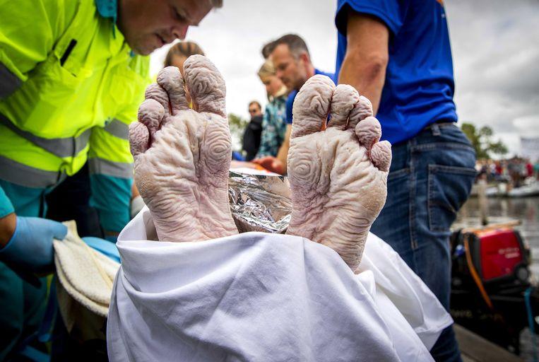 De voeten van Maarten van der Weijden, nadat hij 163 kilometer zwom om geld op te halen voor Kankeronderzoek. Beeld EPA