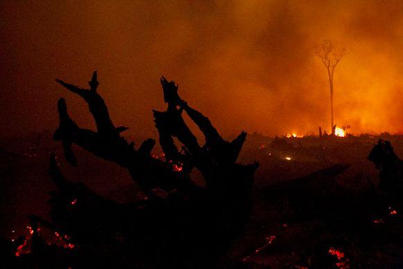 Een bosbrand in Palangkaraya (Indonesië).