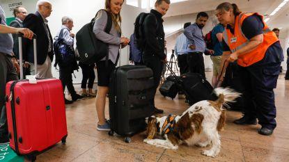 Douane Brussels Airport nam dit jaar al ruim 1,5 miljoen euro cash in beslag