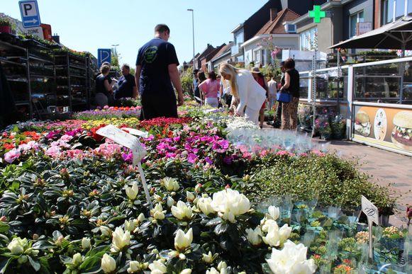 Bloemen kopen op de markt van Lochristi. Het kan weer vanaf dinsdag.